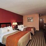 Comfort Inn Troutville Foto