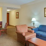 Foto di Holiday Inn Express & Suites Houston - Memorial Park Area