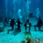 潜水与浮潜