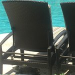 There is a cool iguana under this beach chair!