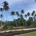 Paradise Road The Villa Bentota Photo
