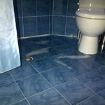 water stays after taking shower for 24 hrs - if you want to use toilet - step into dirty pool