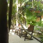 Foto de Las Palmas Maya