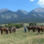 Take a break from moving cattle from one grazing area to another at Zapata Ranch.