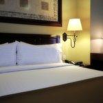 Foto de Holiday Inn Hotel & Suites Zona Rosa