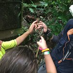 We went on a tour with Cesar, his love and passion for the nature makes him the BEST GUIDE/TOUR