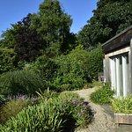 Garden cabin and gardens.
