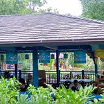Photo of Flame Tree Barbecue