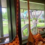 Photo of Blue Giraffe