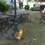 Photo of La Ferme des 3 Maillets