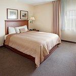 Photo de La Quinta Inn & Suites Corpus Christi Northwest