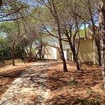 Photo de Camping Villaggio Golfo dell'Asinara