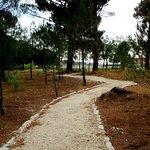 Parque forestal de La Arbolada (Aldeamayor): senderos.