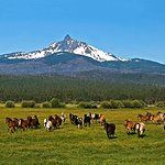 The Lodge Restaurant at Black Butte Ranch Foto