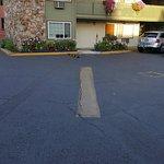 Photo de Timbers Motel