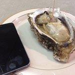 ぷりっぷりの岩牡蠣を食べながらお参り。