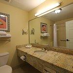 Photo of Holiday Inn Express Tampa North - Telecom Park
