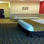 Holiday Inn Express Niles Foto