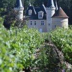 Photo de Ibis Bordeaux Saint Emilion