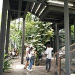 ภาพถ่ายของ ไล-บรา-รี่ สาขา โครงการในป่า อาร์ท คอมเพลกส์