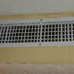 Moldy Air Vents with Leaks