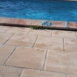 Ibis Sisteron Foto