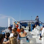 Cruising on board the sea rocket