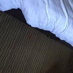 Mercure Ayr Hotel Foto