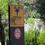 Welcome to Cretan Brewery!