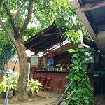 IMG_20160623_173449_large.jpg