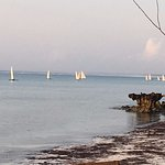 fishing boats on a limestone coast