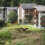 Photo of Helvetia Apartments