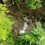View of Creek From our Room