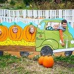 Pumpkin Patch at Smolak Farms