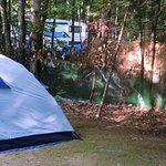 Sebago Lake Family Campground Photo