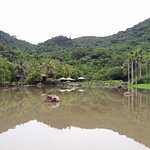 Yanuo Tropical Rain Forest Resort Foto