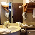Stoney Creek Hotel & Conference Center - St. Joseph Foto