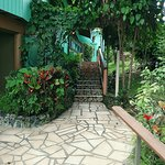 Photo of Lazy Parrot Inn