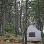 cabin campsite