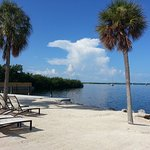 Hampton Inn Key Largo Foto