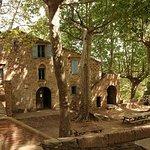Un cadre magique ! Sur les hauteurs de Collioure, on y mange en plein air, en goupe ou en famill
