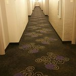 Foto de Holiday Inn Hotel & Suites, Williamsburg-Historic Gateway