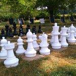 Jeu d'échecs dans le parc