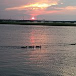 Photo de Hampton Inn and Suites Chincoteague-Waterfront
