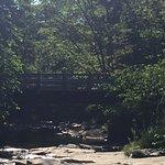 Photo de The Woodstock Inn on the Millstream