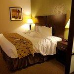 Foto de Best Western Plus Antioch Hotel & Suites