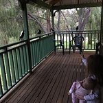 Yallingup Forest Resort Foto
