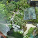 Garden view from room