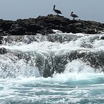 Marietas Islands Foto