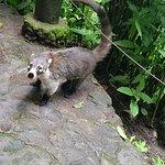 Photo de Reserva Natural Atitlan